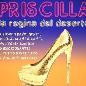 Priscilla La Regina Del Deserto: Al Via Il Laboratorio Di Musical Per Adulti!