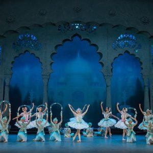 L'English National Ballet è Alla Ricerca Di Ballerini Classici Per Il Corpo Di Ballo Del Lago Dei Cigni
